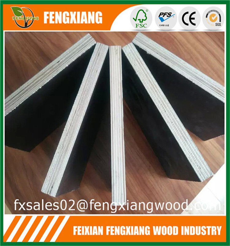Hardwood Core Film Faced Shuttering Plywood